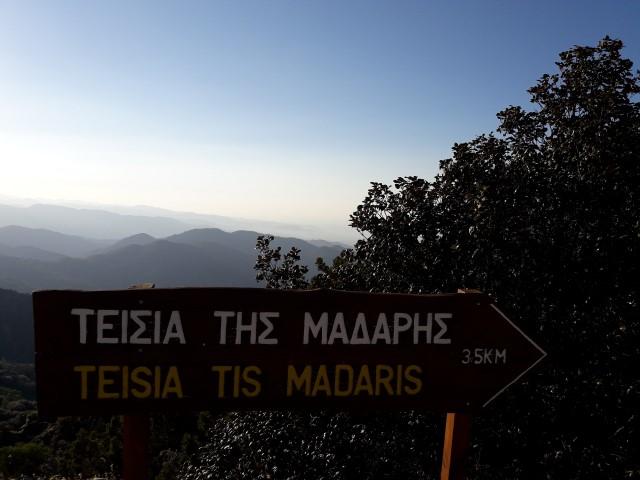 Tesia-Maderis